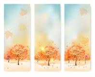 Tre insegne astratte di autunno con le foglie di colore Fotografia Stock