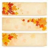 Tre insegne astratte di autunno con le foglie di colore royalty illustrazione gratis