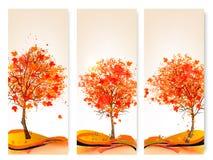 Tre insegne astratte di autunno con le foglie variopinte illustrazione vettoriale