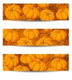 Tre insegne con le zucche arancio. Immagini Stock Libere da Diritti