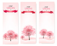 Tre insegne della molla con gli alberi sboccianti di sakura. Immagini Stock Libere da Diritti