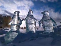 Tre iskalla pingvin royaltyfria bilder