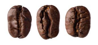 Tre kaffebönor Arkivbild