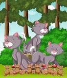 Tre katter och massor av mus i parkera vektor illustrationer