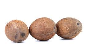 Tre kokosnötter som isoleras på en vit bakgrund Arkivbilder