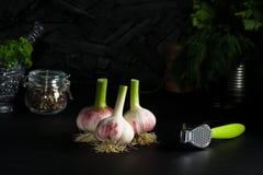 Tre kulor av ung press för vitlök- och kromgräsplanvitlök Arkivfoto