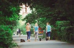 Tre kvinnor går med hundkapplöpning i staden parkerar i morgonen royaltyfri bild