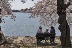 Tre kvinnor på en bänk i Washington, DC Arkivfoto