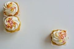 Tre läckra muffin Royaltyfri Foto