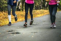Tre löpare för unga kvinnor Royaltyfri Foto