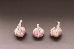 Tre lampadine di aglio Fotografia Stock Libera da Diritti