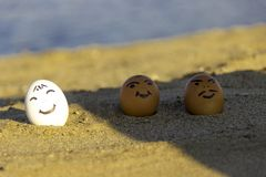 Tre le fega ägg solbadar på stranden arkivfoto