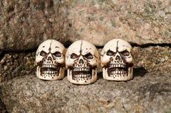 Tre le skallar Arkivbilder