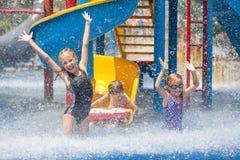 Tre lilla ungar som spelar i simbassängen Arkivfoton