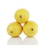 Tre limoni maturi freschi isolati su bianco Fotografia Stock