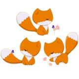 Tre lite rävar Arkivfoton