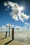 Tre loggar in stranden Arkivbild