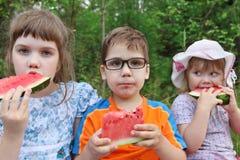 Tre lyckliga barn äter den nya vattenmelon Arkivfoto