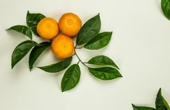 Tre mandarini, mandarini, clementine, agrumi immagine stock