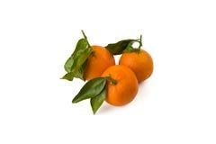 Tre mandarini piacevoli e succosi con le foglie Fotografie Stock Libere da Diritti