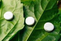 Tre medicinska minnestavlor fodrade i rad på de gröna sidorna av växten, homeopatiska mediciner royaltyfri foto