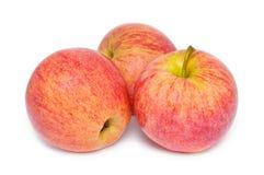 Tre mele rosse isolate sopra Fotografia Stock