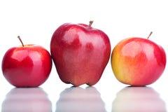 Tre mele rosse isolate su bianco Fotografia Stock Libera da Diritti