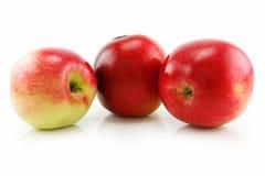 Tre mele rosse mature nella riga isolata su bianco Fotografia Stock