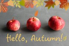 Tre mele rosse su una tavola di legno, la scrittura, ciao autunno! Fotografia Stock