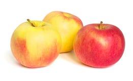 Tre mele su priorità bassa bianca Fotografia Stock Libera da Diritti