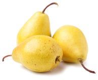 Tre mogna gula päron som isoleras på vit bakgrund Arkivbild