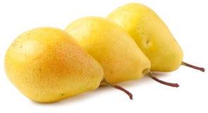 Tre mogna gula päron som isoleras på vit bakgrund Arkivfoto