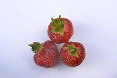 Tre mogna röda jordgubbar på en vit bakgrund, Royaltyfria Foton