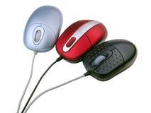 Tre mouse Fotografie Stock Libere da Diritti