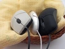 Tre mouse in un cestino Fotografia Stock Libera da Diritti