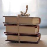 Tre mycket lilla böcker Arkivfoton