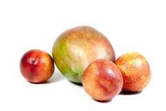 Tre nektariner och mogen tropisk mango på vit Arkivbilder