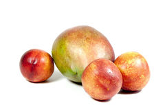 Tre nettarine e mango tropicale maturo su bianco Immagini Stock