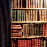 Tre nuovi scaffali di vecchi libri graziosi Fotografia Stock Libera da Diritti