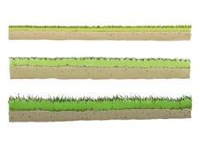 Tre olika art av gräs Royaltyfri Fotografi