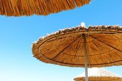 Tre ombrelli di spiaggia fatti di paglia al fondo del cielo blu Immagine Stock Libera da Diritti
