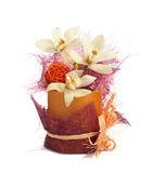 Tre orchids med apelsinen klumpa ihop sig i en plast- vase   Arkivbild