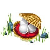 Tre pärlor i en guld- ask och gräs omkring Royaltyfria Foton