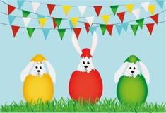 Tre påskbunnys som kläckas från ett ägg Sitter kaniner i gräs vektor illustrationer