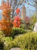 Tre pagode a Dali, Cina Immagini Stock