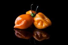 Tre peperoni gialli del habanero dal lato Fotografia Stock