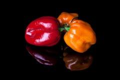 Tre peperoni giallo e rosso del habanero Immagini Stock