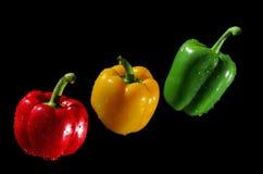 Tre peperoni su priorità bassa nera Fotografie Stock Libere da Diritti