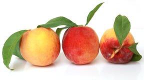 Tre persikor Arkivfoton