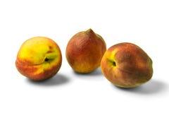 Tre persikor som isoleras på vit bakgrund Royaltyfri Foto